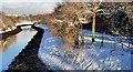 J3674 : The Connswater, Belfast (6) by Albert Bridge
