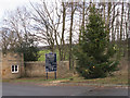 NZ1322 : Christmas tree at Raby Castle North Lodge by David Hawgood
