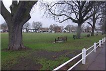 TQ1572 : Twickenham Green by Stephen McKay