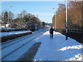 NZ0161 : The Skier arriving on Platform 1 is for .......... by Les Hull