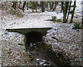 NZ1530 : Culverted Witton Row Beck at Witton Castle by peter robinson