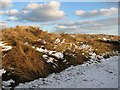 TG4624 : Frozen dunes beside the path from Horsey Gap to Winterton by Evelyn Simak