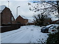 SU6705 : Looking from Waterworks Road into a snowy Knight Gardens by Basher Eyre