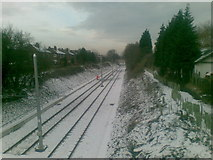 SJ8195 : Firswood Tramway by Alex McGregor