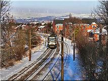 SD7908 : Metrolink Tramway by David Dixon