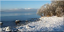 NS3883 : Frozen shore of Loch Lomond by Lairich Rig
