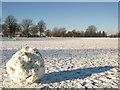 ST5775 : Durdham Down in winter by George Evans