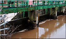 J3470 : The Stranmillis weir, Belfast (10) by Albert Bridge