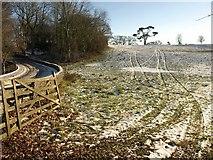 SX7962 : Field, Dartington by Derek Harper