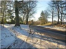 SX7962 : Snowy road, Dartington by Derek Harper