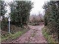 R8627 : Rough Track by kevin higgins