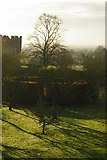 SO4465 : Croft Castle gardens from Garden Cottage by Christopher Hilton