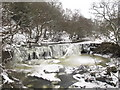 NY8452 : Frozen Holms Linn by Mike Quinn
