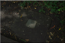 SE5952 : White Rose Walk - Commemorative plaque by Phil Champion