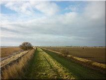 TA3117 : Walking west along the flood bank by Ian S