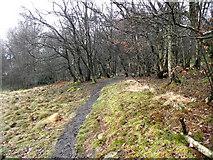 SJ8860 : Looking back to Woodside Farm by Jonathan Kington