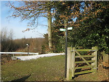 TR3051 : Bridleway junction near Lower Longlands Wood by David Anstiss