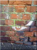 SZ0991 : Benchmark on Holdenhurst Road railway bridge by Roger Templeman