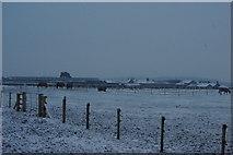 NZ1368 : Ravenside farm by peter maddison