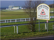 TQ2258 : Epsom Downs, Home of the Derby by Colin Smith