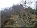 SJ8760 : Footpath along Congleton Edge by Stephen Craven