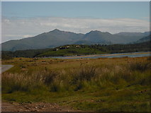 SH5935 : Snowdon with Ynys Gifftan in foreground by carys williams