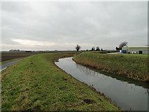 TF6313 : River Nar at Setchey by Adrian S Pye