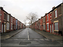 SJ3688 : Madryn Street, Toxteth by John S Turner