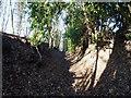 SO6699 : Bridleway near Deancorner by Richard Law