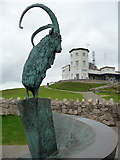 SH7683 : Sculpture of a Kashmir Goat at the Great Orme Visitor Centre by Phil Champion