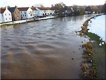 NT5173 : East Lothian Rivers : The Tyne at Nungate Bridge, Haddington by Richard West