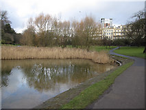 SJ3688 : Prince's Park Lake and Mansions by John S Turner