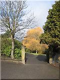SJ3688 : Gateway in Prince's Park by John S Turner