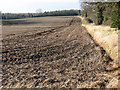 TG3705 : Cultivated field east of Hassingham by Evelyn Simak