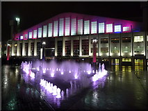 TQ1985 : Wembley: fountain and Arena by night by Chris Downer