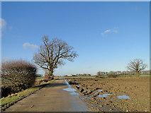 TM3572 : Roadway to Home Farm by Adrian S Pye