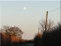 TM3886 : Late afternoon at Ilketshall St Andrew by Adrian S Pye