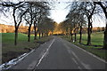 SX4756 : Plymouth : Central Park Path by Lewis Clarke