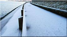 J3979 : Frosty path, Holywood by Albert Bridge