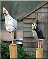 TF9740 : Birds perched on posts, Westgate by Evelyn Simak
