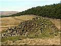 SK1786 : Ruined drystone wall by Graham Hogg