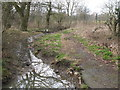 TQ4266 : The River Ravensbourne - East Branch, tributary on Bromley Common by Mike Quinn