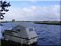 TG3404 : River Yare near the Beauchamp Arms public house by Glen Denny