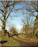 SS7509 : Entrance to North Leigh by Derek Harper