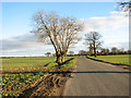 TM0886 : Approaching Winfarthing on Winfarthing Road by Evelyn Simak