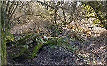 NS3976 : Rubble, possibly from Brickfield Cottage by Lairich Rig