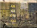 J3575 : Draught marks, Hamilton Dock, Belfast by Albert Bridge