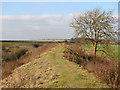 TL5553 : North-west on Fleam Dyke by John Sutton