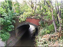 TQ3772 : Bridge over the River Ravensbourne, Randlesdown Road, SE6 by Mike Quinn