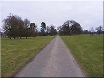 SJ5409 : Attingham Drive by Gordon Griffiths